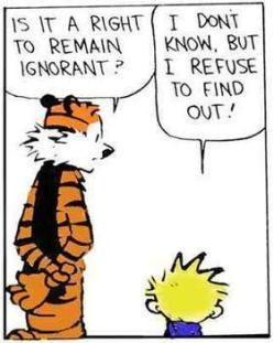 Calvin & Hobbes: Ignorance